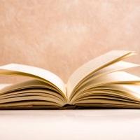¡He conseguido leer un libro!